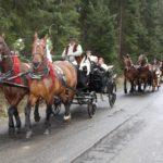 wesela konie organizacja