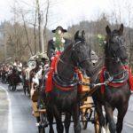 konie na pogrzeb